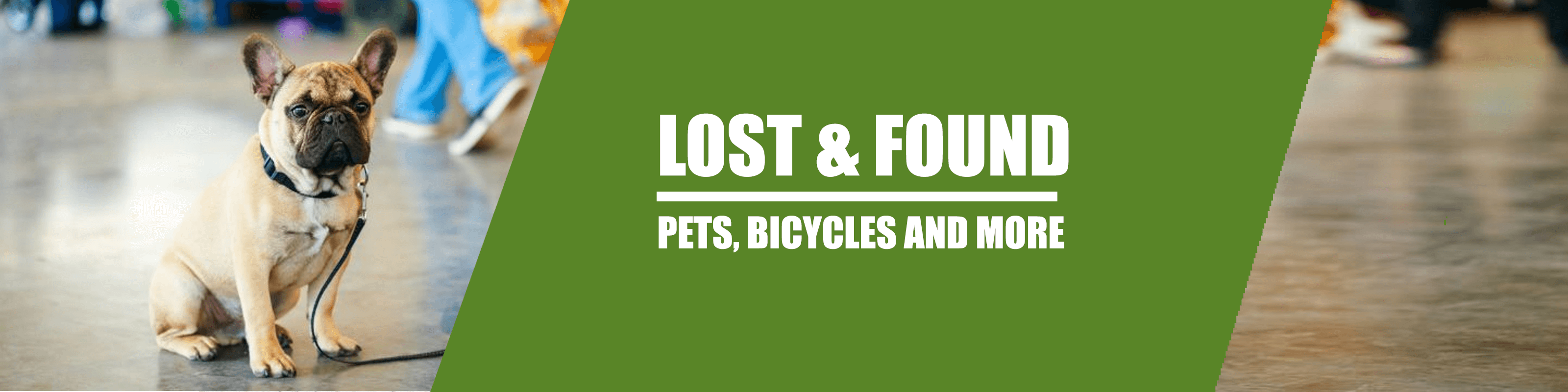 Lost and Found Dublin